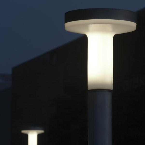 product image for Boletus Outside C